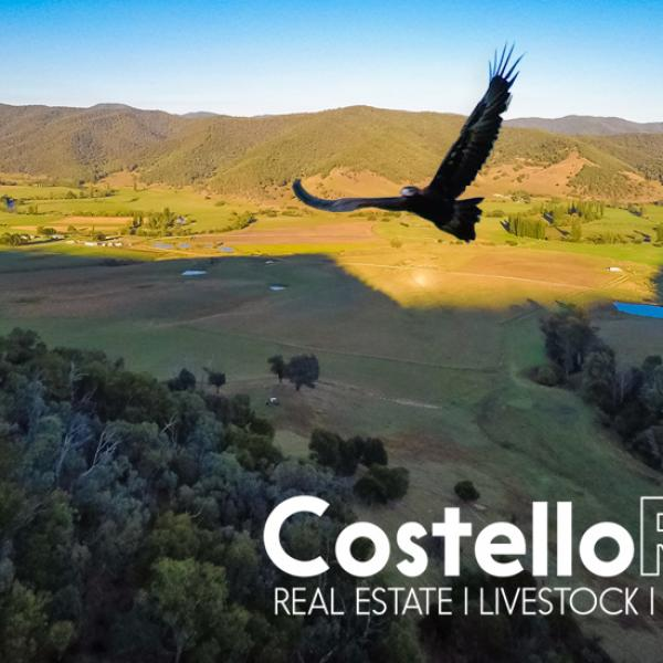 Costello Rural
